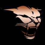 Puma Metais